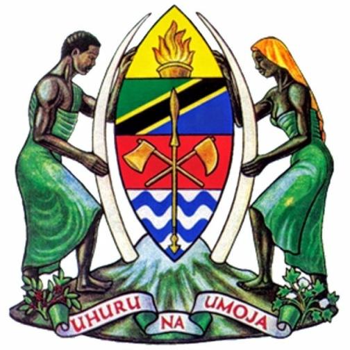 """TANZANIA – Rafforzamento del Ministero per lo sviluppo comunitario, le tematiche di genere e l'infanzia – MCDGC. Il """"Women's Information Centre – WIC."""