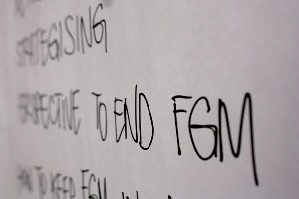 """END FGM European Network. """"Affrontare il tema delle mutilazioni genitali femminili (MGF) nei progetti e programmi di sviluppo"""""""