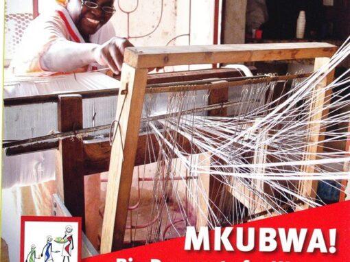 TANZANIA: promozione dell'imprenditoria femminile: Incubatore virtuale di imprese (TVBI)