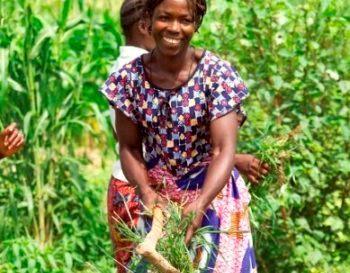 """BURKINA FASO – Programma """"LRRD"""" per rafforzare la resilienza delle comunità vulnerabili  all'insicurezza alimentare e nutrizionale nelle province di Soum e Loroum"""